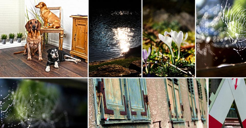 Ansicht der Flickr-Seite von medienmaler.de