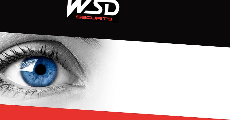 Webseite der WSD Security GmbH